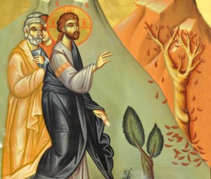 Jesus Curses the Fig Tree